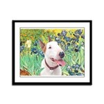 Bull Terrier (B) - Irises Framed Panel Print