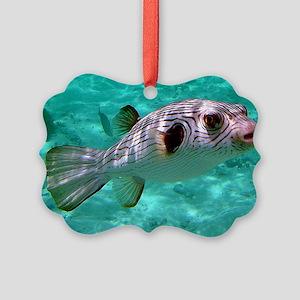 Striped Puffer Fish Ornament