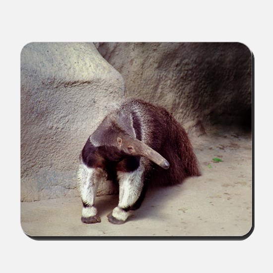 Giant Anteater Nose Mousepad