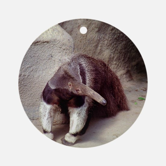 Giant Anteater Nose Round Ornament