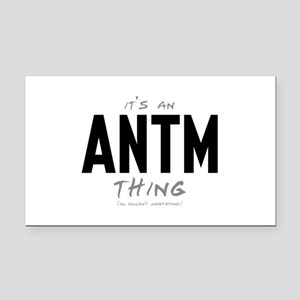 It's an ANTM Thing Rectangle Car Magnet