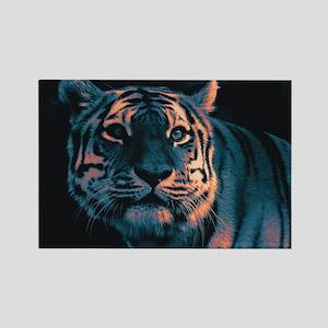 Tiger, Sunset Magnets