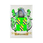 Gilgmann Rectangle Magnet