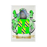 Gilg Rectangle Magnet (100 pack)