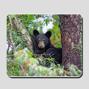 Baby Black Bear Mousepad
