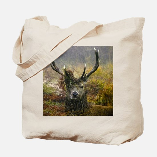 Stag Party the morning after Tote Bag