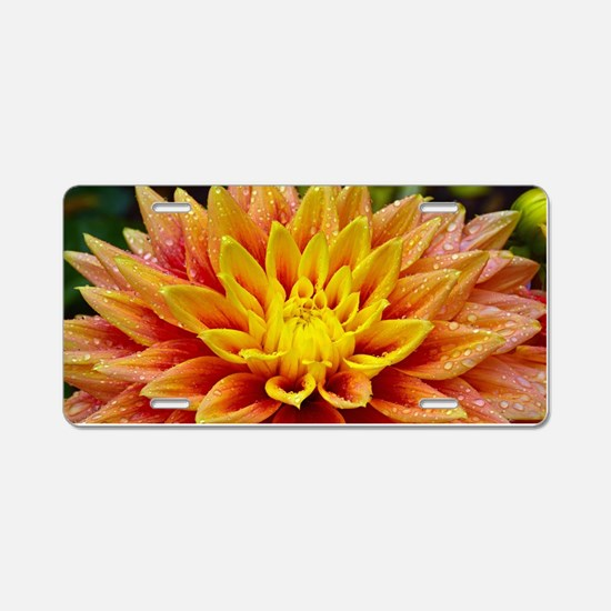 Cute Plants Aluminum License Plate