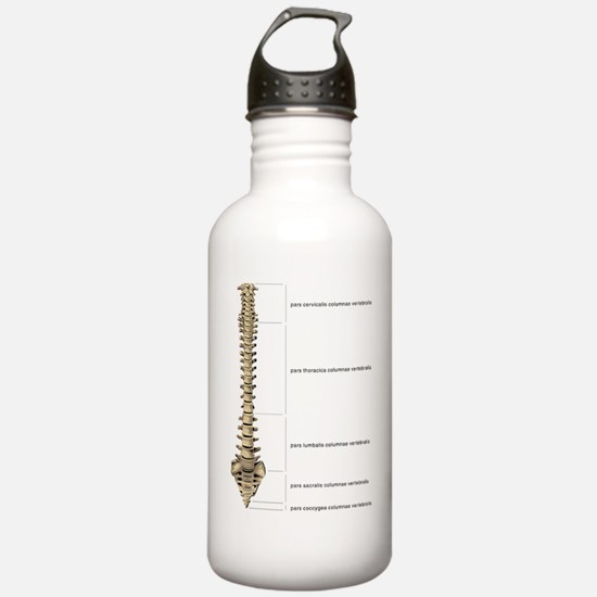 Cute Doctor physical therapy mens Water Bottle