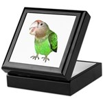 Cape Parrot 1 Keepsake Box