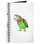 Cape Parrot 1 Journal