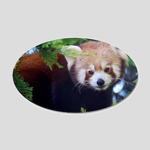 Red Panda 20x12 Oval Wall Decal