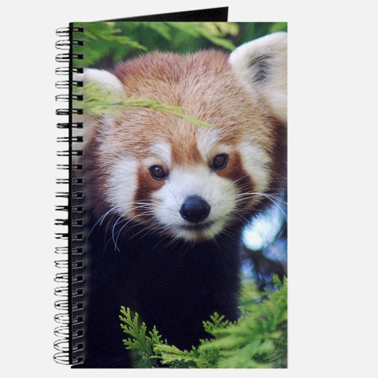 Red Panda Journal