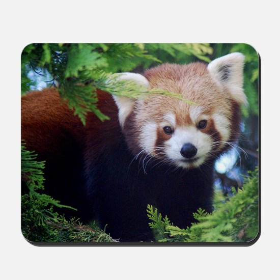 Red Panda Mousepad