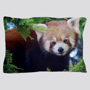 Red Panda Pillow Case