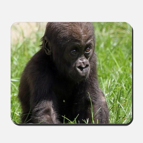 Gorilla-Baby002 Mousepad