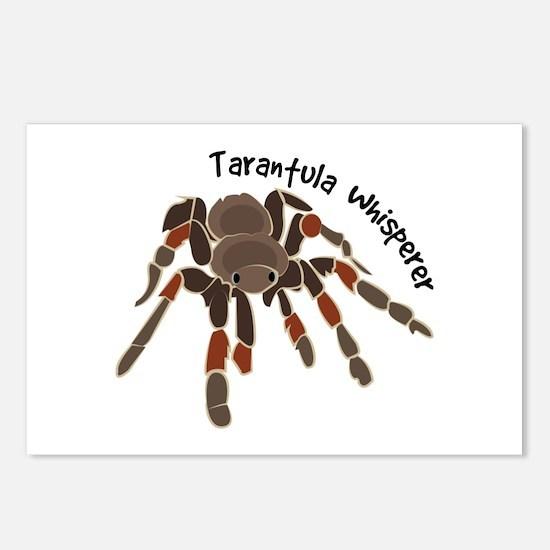 Tarantula Whisperer Postcards (Package of 8)