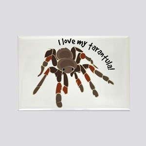 Love My Tarantula Magnets