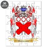 Gibbonson Puzzle