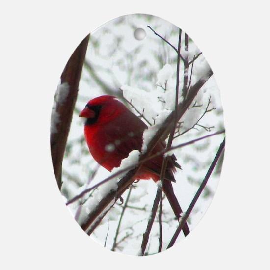 Bird Lovers Choice Oval Ornament
