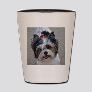 Finley dog of love Shot Glass