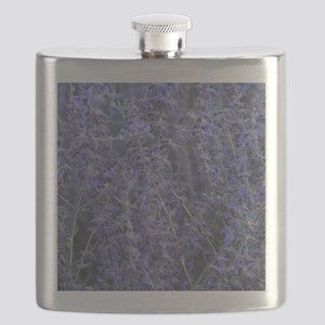 Lavender plants Flask