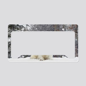 Husky License Plate Holder