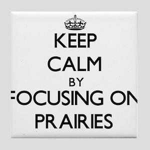 Keep Calm by focusing on Prairies Tile Coaster