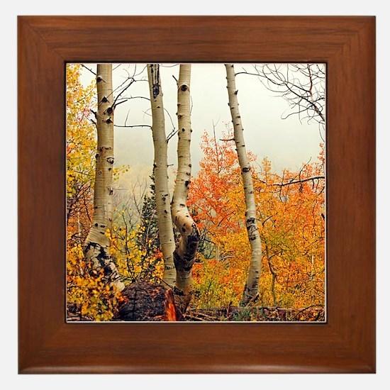 Misty Autumn Aspen 2 Framed Tile
