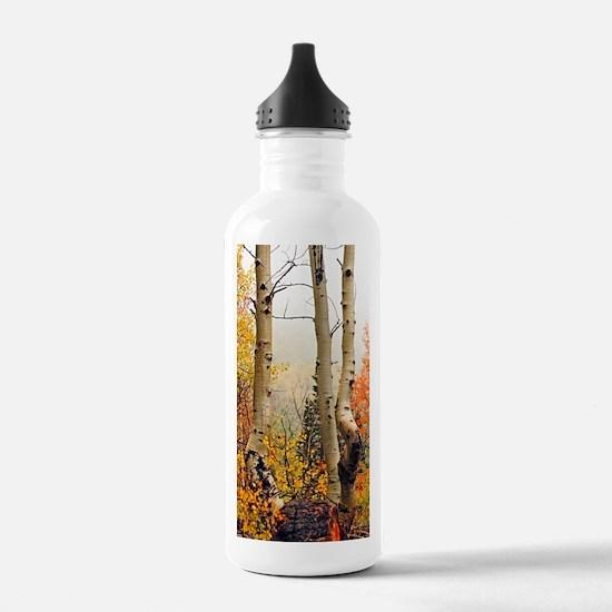 Misty Autumn Aspen 2 Water Bottle
