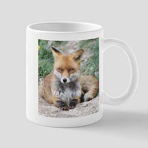 Fox002 Mugs