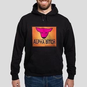 Alpha B Hoodie (dark)