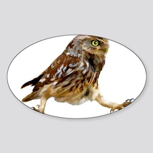 Determined Marching Owl Sticker