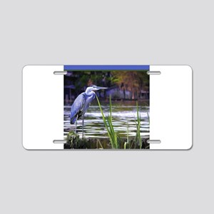 Blue Heron Sketch Aluminum License Plate