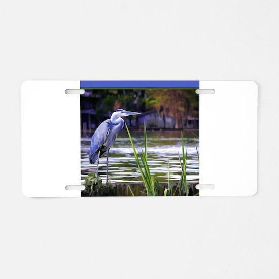 Blue Heron Sketch Aluminum License Plate