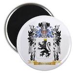 Gerritsma Magnet