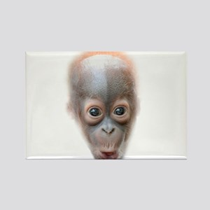 Funny Baby Orangutan Face Magnets
