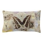 Antique Butterfly Pillow Case