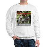 Go WooFDriver Go Sweatshirt