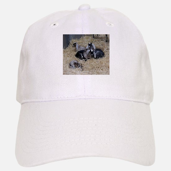 Cute Baby Goats Baseball Baseball Cap