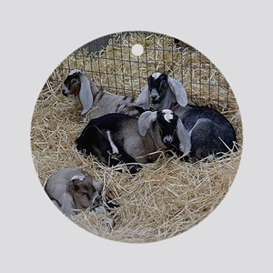 Cute Baby Goats Round Ornament
