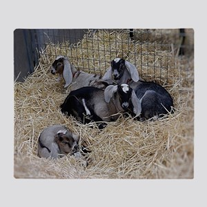 Cute Baby Goats Throw Blanket