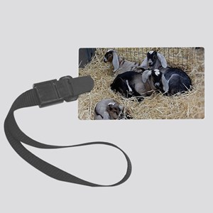 Cute Baby Goats Large Luggage Tag