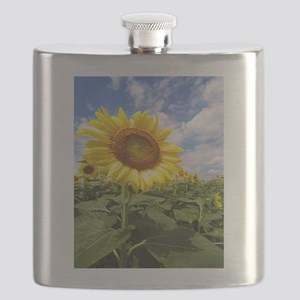 Sunflower Garden Flask