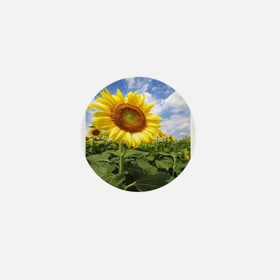 Sunflower Garden Mini Button
