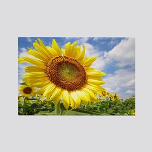 Sunflower Garden Magnets