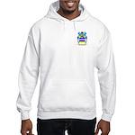 Gergely Hooded Sweatshirt