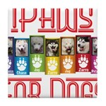 iPaws for Dogs Tile Coaster