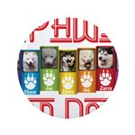 iPaws for Dogs 3.5