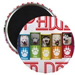 iPaws for Dogs Magnets