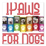 iPaws for Dogs Square Car Magnet 3